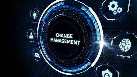 Do you have the change management process in place to support the move to a TMS?