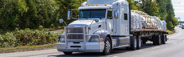 Demand for flatbed equipment is high, and while it is declining for dry van and refrigerated, don't expect truckload rates to follow.]