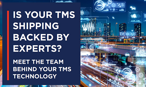 Transportation Insight's logistics technology offering is backed by experts who help your organization implement best practices, manage behavioral change and give you time to focus on other priorities.